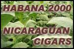 Habana 2000